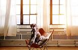Kies de raamdecoratie die past bij uw bedrijf
