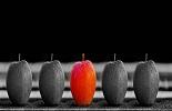 42 procent bedrijven heeft geen beleid op het gebied van diversiteit en inclusiviteit